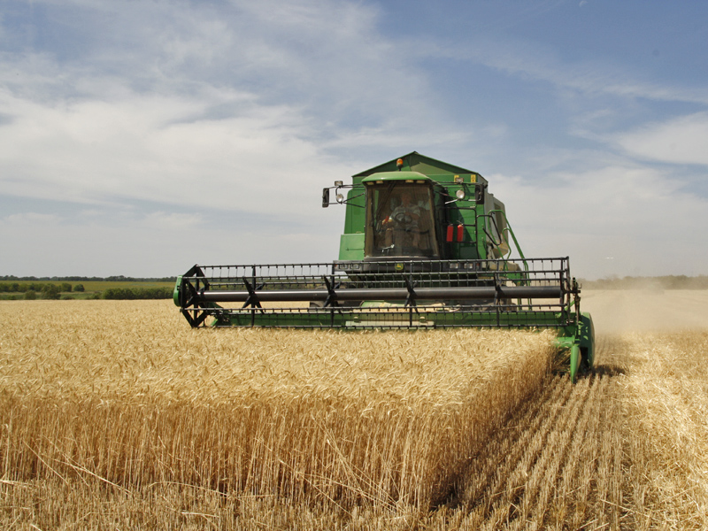 Agriculture in Volgograd Oblast