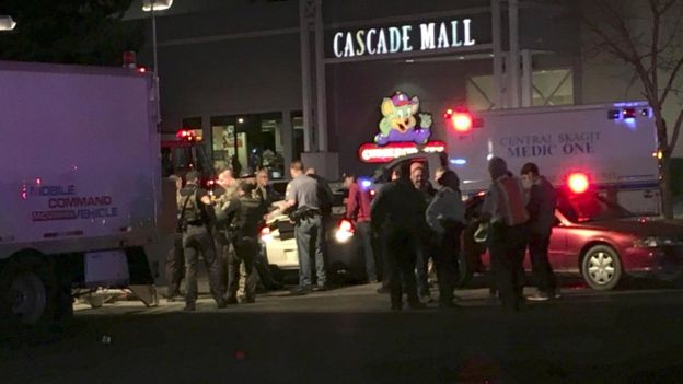 Washington State Gun Attack