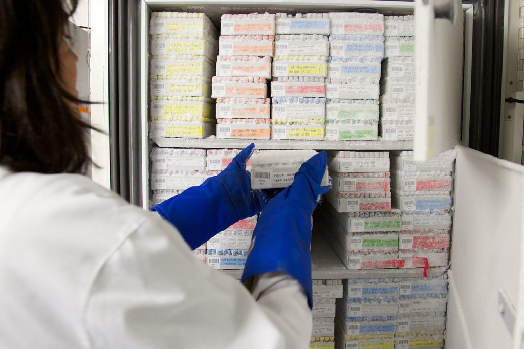 biological_samples_in_freezer