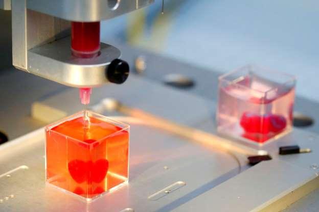 3D heart print