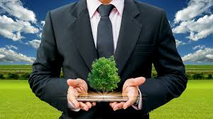 Business Can Help the Environment